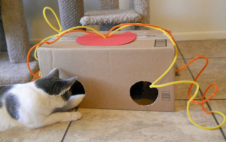 Поделки для котов